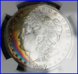 1896 Morgan Silver Dollar Beautiful TONED Collector Coin NGC CAC MS 64