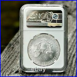 2001 American Silver Eagle 4th Year $1 Dollar NGC MS70. Brown Label Beauty