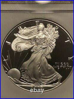 2002-W Silver Eagle S $1 NGC PF69 PROOF ULTRA CAMEO! Beautiful CoIn FREE SHIP