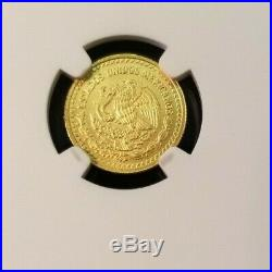 2019 Mexico Gold Libertad 1/10 Onza Ngc Ms 70 First Releases Perfect Beauty