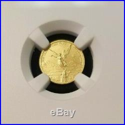 2019 Mexico Gold Libertad 1/20 Onza Ngc Ms 70 First Releases Perfect Beauty